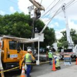 Este martes 22 de junio        Reposición de redes en los barrios San José y El Bosque